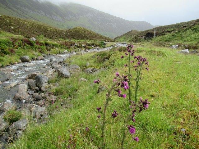 In the course of Allt Coire Ardair near Loch Laggan