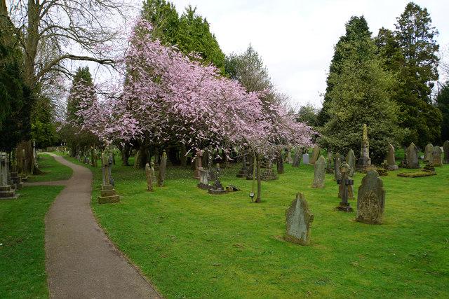 Churchyard of Knowle Parish Church