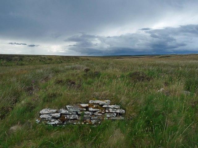 Remains of a farmstead above Gill Burn, Caithness