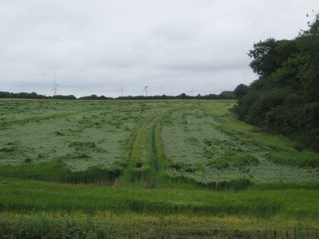 Arable land near High Eske