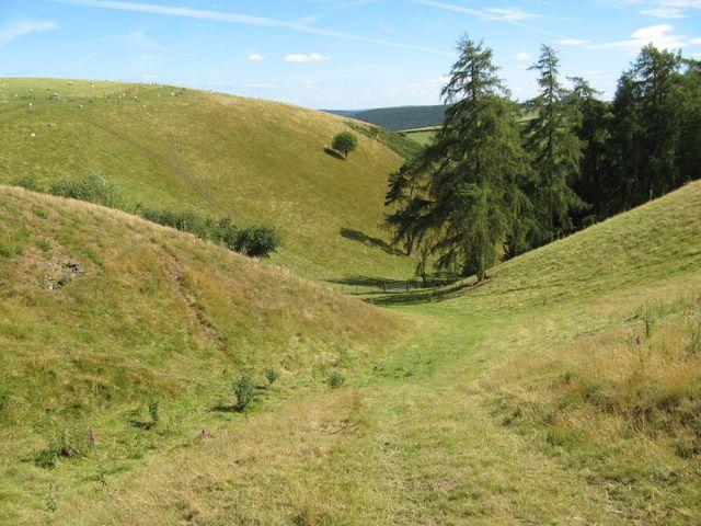Dingle running off Blackhill