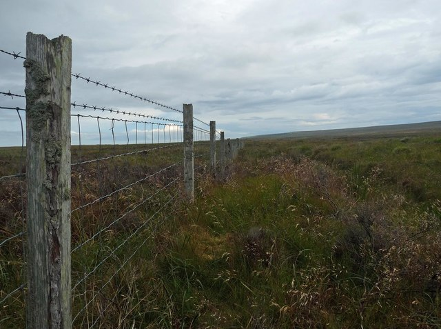 Fence on moorland to the north of Stroupster, Caithness