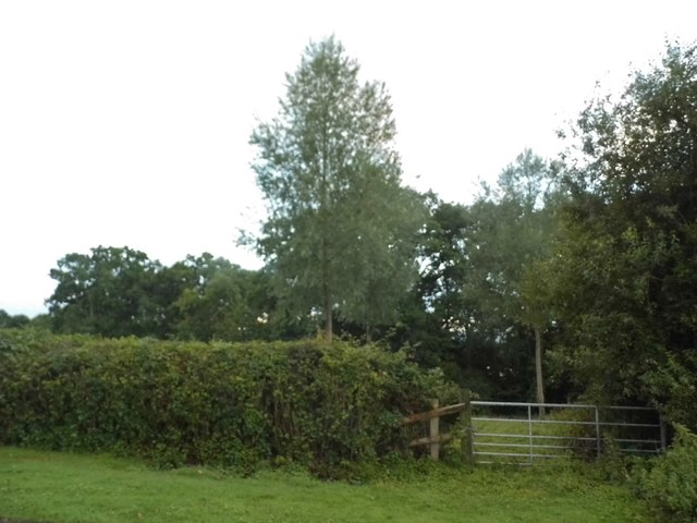 Garden at Hoe Benham Farm