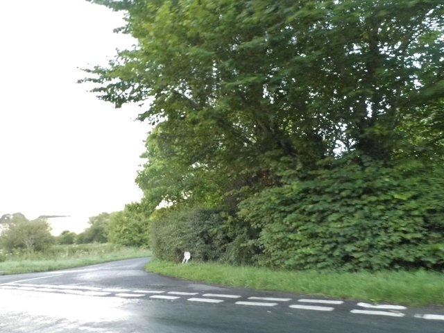 Junction on the B4192, Whittonditch