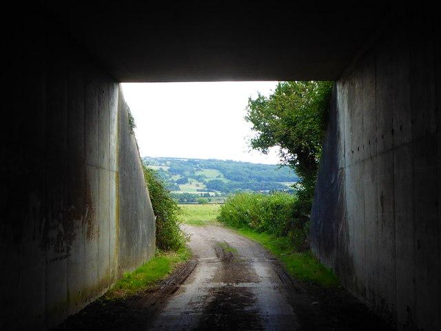 Shakespeare's Avon Way passing under the M5 motorway