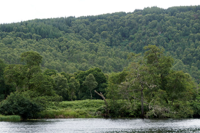 River Beauly at Aigas