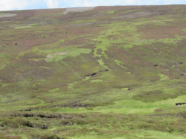 Line of butts on Hill of Doune near Mount Keen
