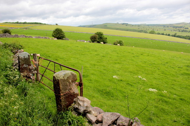 Pasture Near Dirtlow Farm