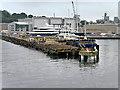 SW8232 : Falmouth Docks, The Eastern Breakwater by David Dixon