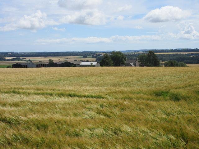 Balzeordie Farm