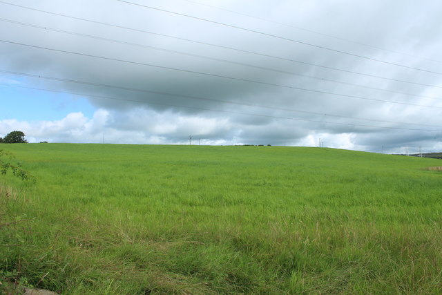 Farmland at Schaw