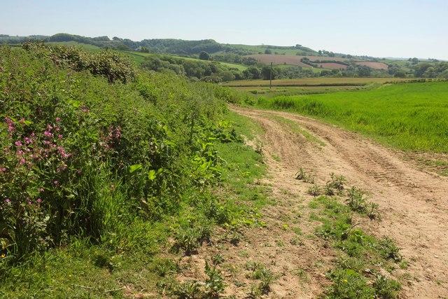 Track near Stoke Water Farm