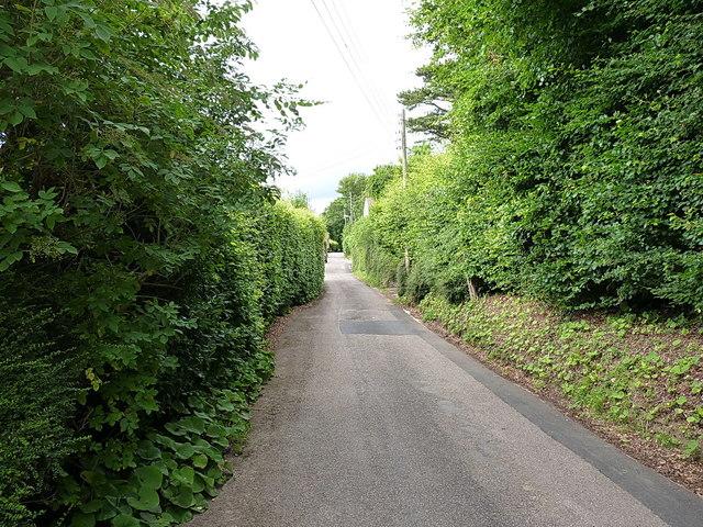 Looking along Alma Lane