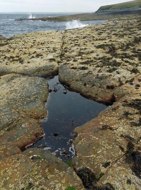 Rockpool on the coast near Nybster, Caithness