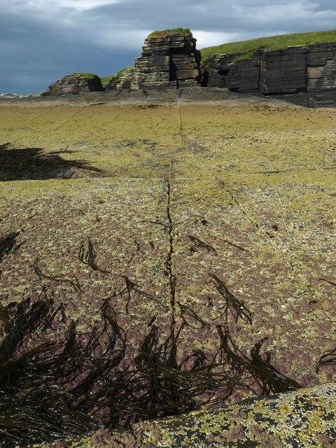 Rock slab on the coast near Milltown, Caithness