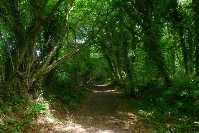 The Cotswold Way north of North Nibley