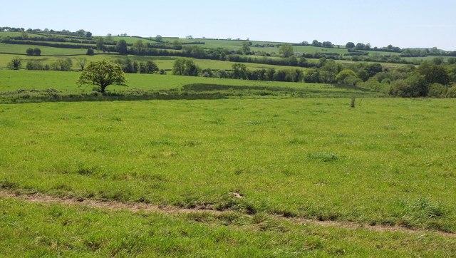 Towards Chapel Marsh