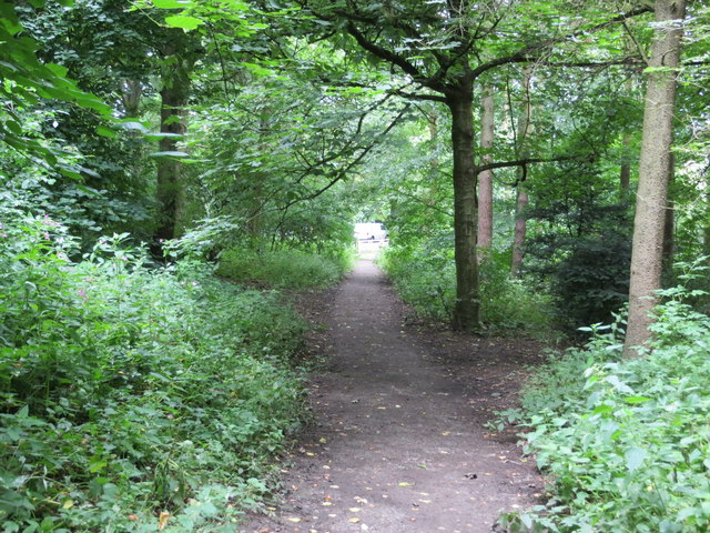 Just one of the numerous footpaths through Chevin Forest Park near Otley