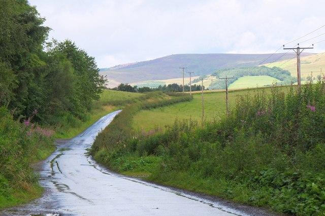 Estate road at Bowhill