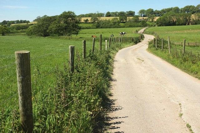 Bridleway to Chedington