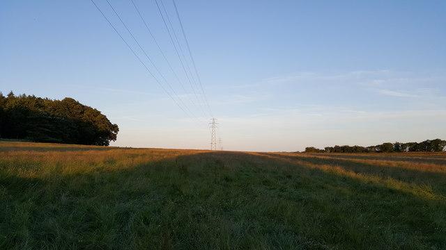 Pylons on Corbridge Common near Temperley Grange