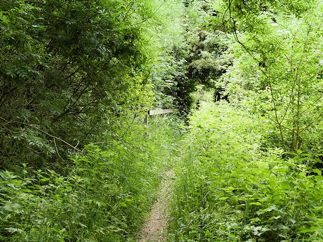 The Itchen Way