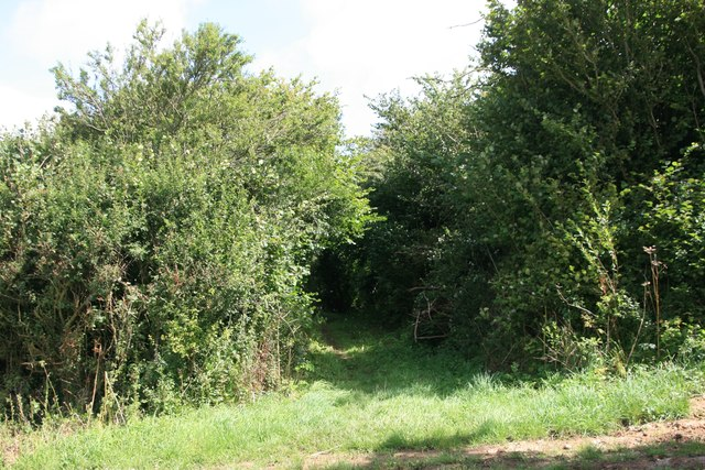 Footpath to A352