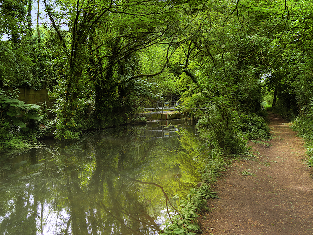 River Itchen above Stoke Lock