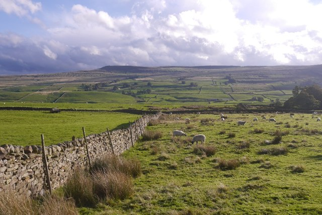 A view over Wensleydale