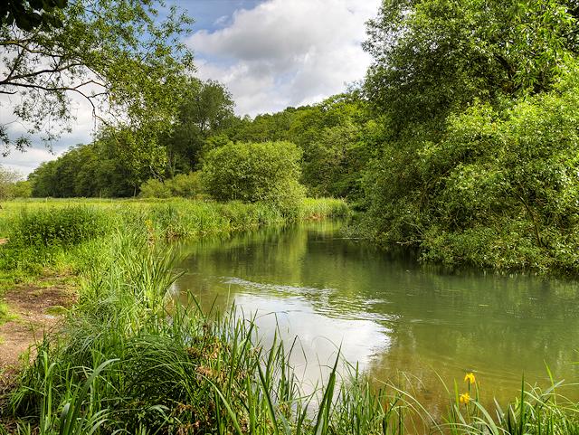River Itchen near Bishopstoke Park