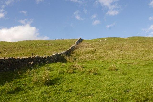 Dyke, Cote Pasture