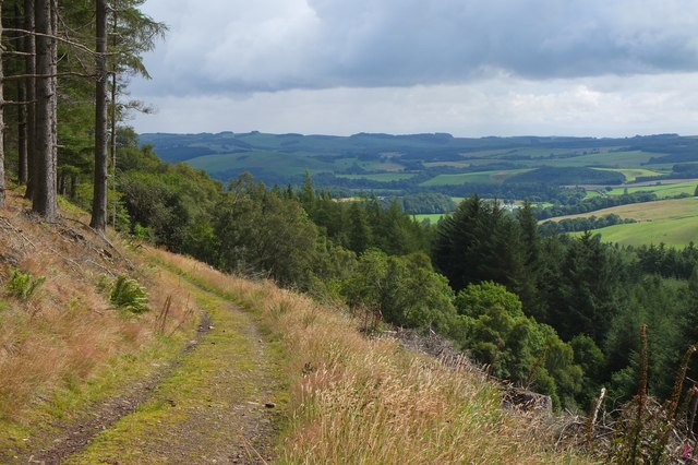 Eastwards from the Duchess's Drive, Bowhill