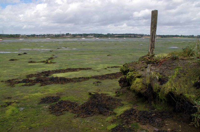 Old Mooring Post