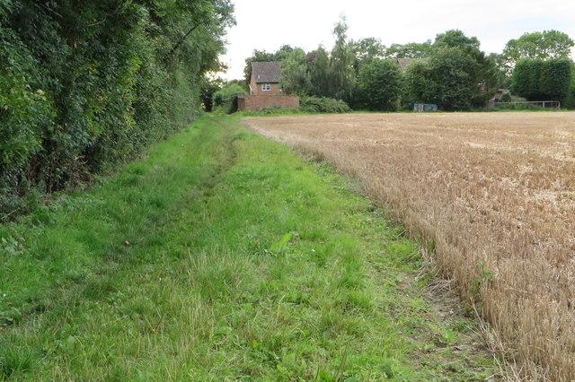 Icknield Way Trail