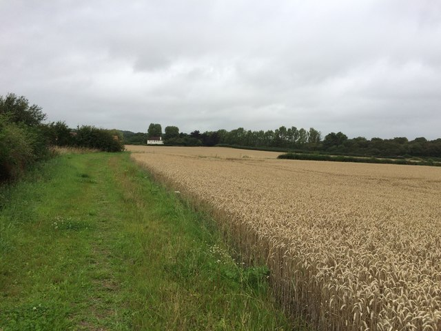 Grassy Footpath at Deep Carrs