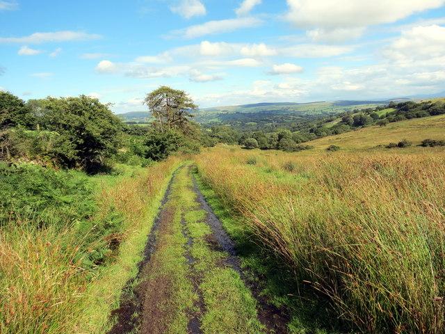 Hen heol ddymunol / Pleasant old road