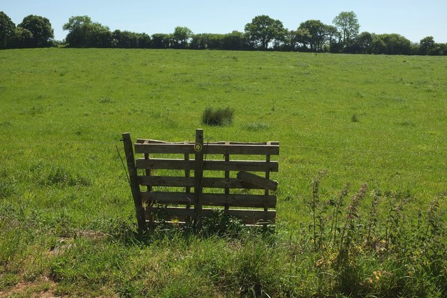 Pallet gate near Wood Dairy Farm
