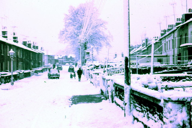 Albert Road Newtown