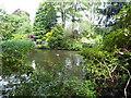 NJ9105 : Dabbling ducks dabbling by Stanley Howe