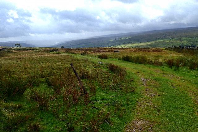 Access track, In Moor