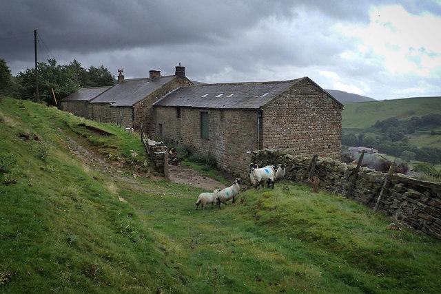 New Houses Edge Farm