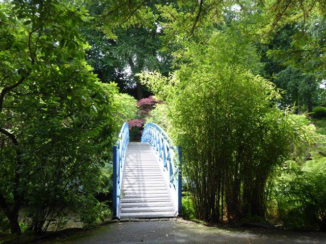 Arched footbridge, Johnston Gardens