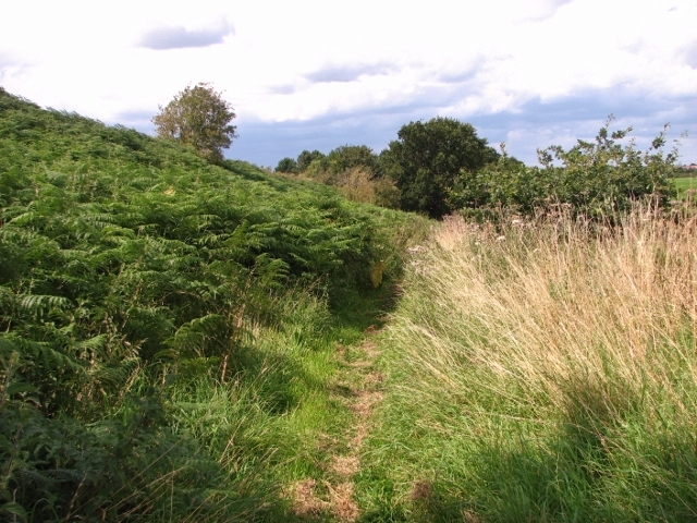 Path skirting the Caistor chalk pit