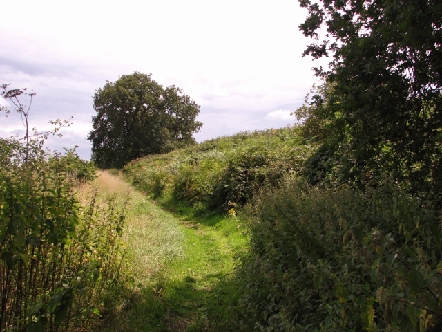 Narrow path skirting the Caistor chalk pit