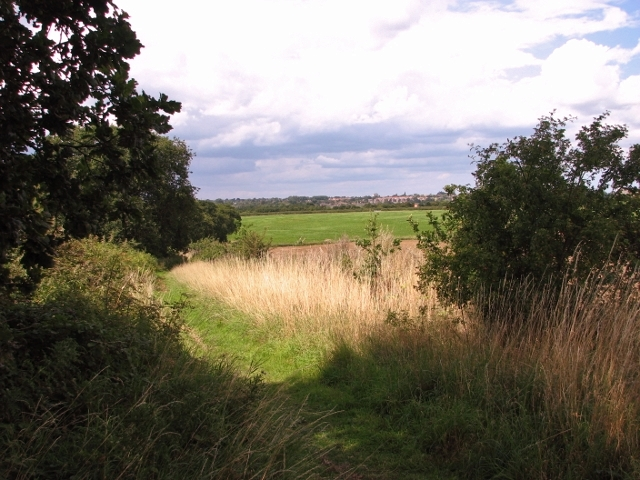 Boudica's Way past Caistor chalk pit