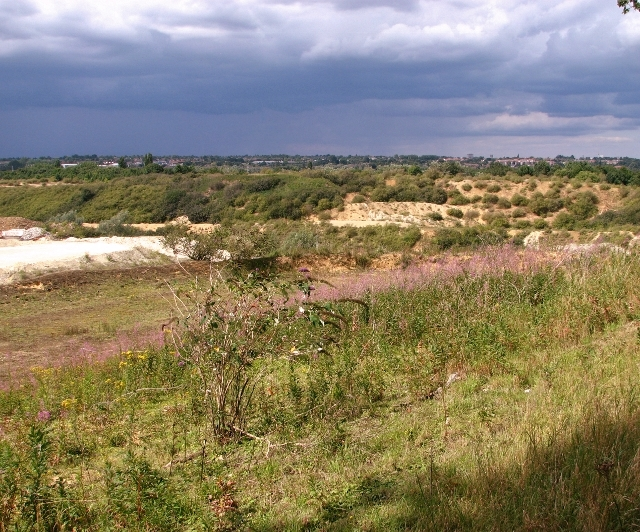 The edge of the Caistor chalk pit