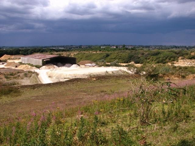The chalk quarry at Caistor St Edmund