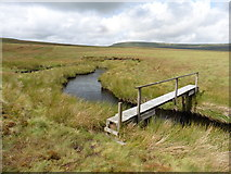 NY8221 : Footbridge over Connypot Beck by Roger Cornfoot