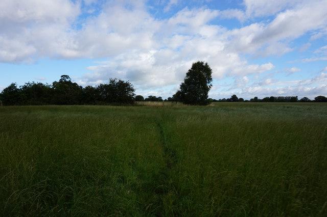Path leading to Spaldington