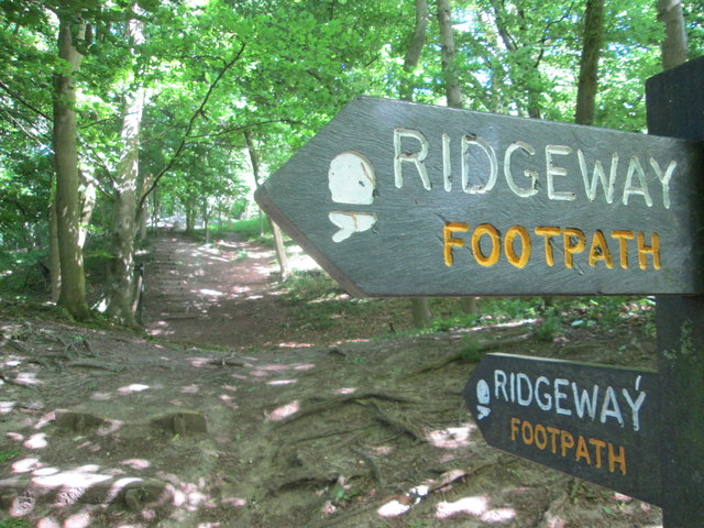 Ridgeway signposts, Aldbury Nowers